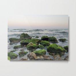 moss stones Metal Print