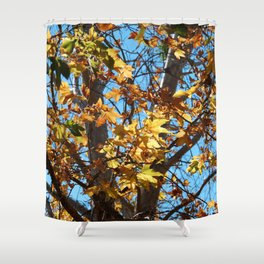 Fall Time Tree Shower Curtain