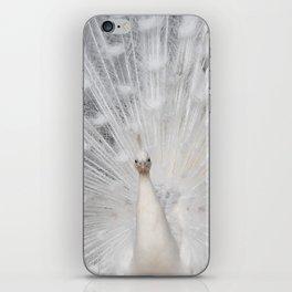 White Peacock folding fan iPhone Skin