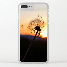 Dandelion blowing in the breeze at Sunset Clear iPhone Case