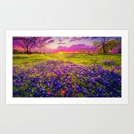 Blue Bonnet Sunset landscape painting Art Print