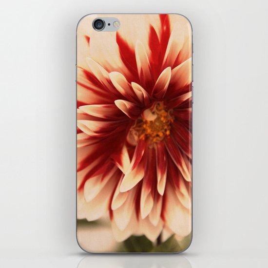a little peace iPhone & iPod Skin