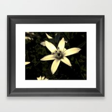 Star of Bethlehem Framed Art Print