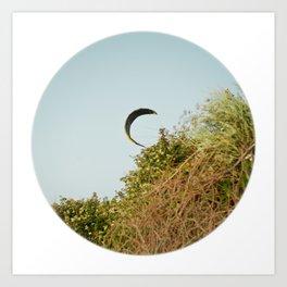 """CREEPING IN"" kitesurf . kite . surf Art Print"