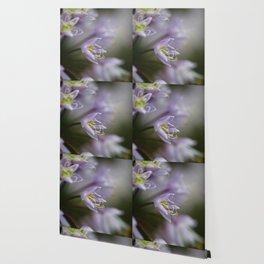 Delicate Purple Flowers Wallpaper