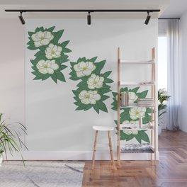 White magnolias among dark green leaves Wall Mural