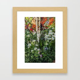 Rural landscape with a birch tree Framed Art Print