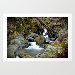 Marin Waterfall Art Print