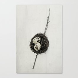 nest + speckled eggs   fig. o1 Canvas Print