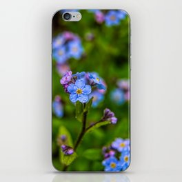Forget-me-nots In The Rain iPhone Skin