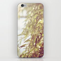 Breezy iPhone & iPod Skin