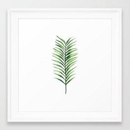 Palm branch. Framed Art Print