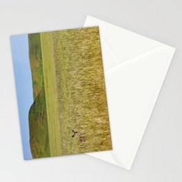 Mule Deer In Grassy Field Stationery Cards