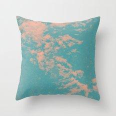 2746 Throw Pillow