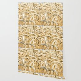 Golden Wheat Wallpaper