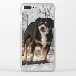 Give It A Try! – Versuchs doch! Clear iPhone Case