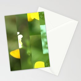 crash_ 18 Stationery Cards