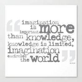 imagination is more important than knowledge… Canvas Print