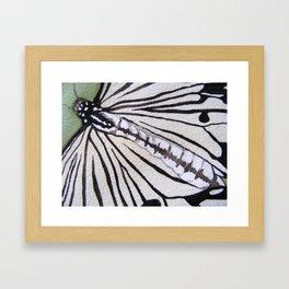 Butterfly: Paper Kite Framed Art Print