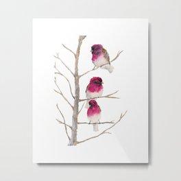 Fuxia birds Metal Print