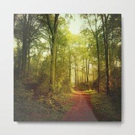 October Forest Metal Print
