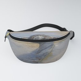 PROPELLER FROM 1917 SHIPWRECK OF SS BELEM CORNWALL Fanny Pack