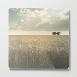 Two Elements - Earth and Air Metal Print