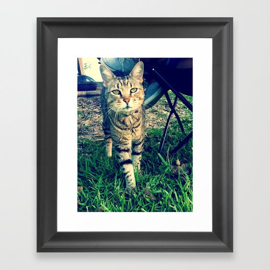 Speedy  Framed Art Print