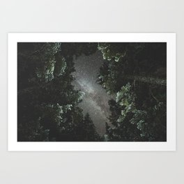 Milky Way Above Forest Art Print