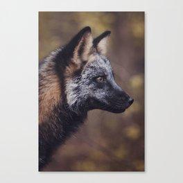 Cross Fox Canvas Print
