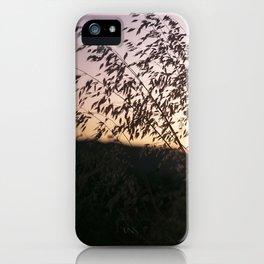 i-5 sunset iPhone Case