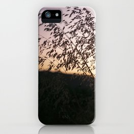 i-5 sunset iPhone Case