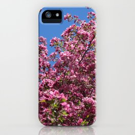 Spring blossoms pink iPhone Case