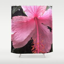 Dewdrops on Tropical Pink Flower Shower Curtain