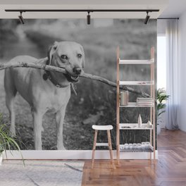 Fetch (Black and White) Wall Mural