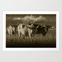 Sepia Tone of Texas Longhorn Steers under a Cloudy Sky Art Print