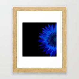 blue sunflower Framed Art Print