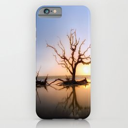 Driftwood Reflection Along the Waters Edge on Jekyll Island Beach iPhone Case