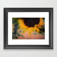 Sunflower II (mini series) Framed Art Print