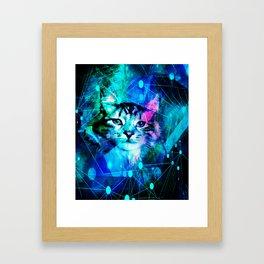 Kitty Cat Laser Lights at the Aleurorave Framed Art Print
