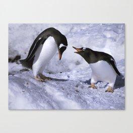 Chatting Penguins Canvas Print