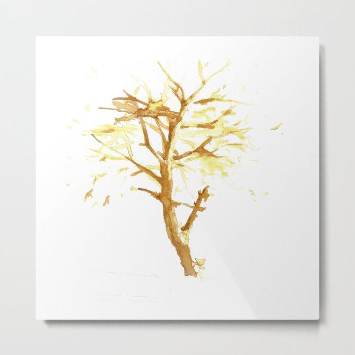 Colors of Tree  Metal Print