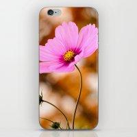 cosmos iPhone & iPod Skins featuring Cosmos by LudaNayvelt