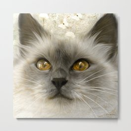 """Cute Kitty (Love cats)"" Metal Print"
