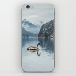 Couple of swans, Alpsee lake iPhone Skin