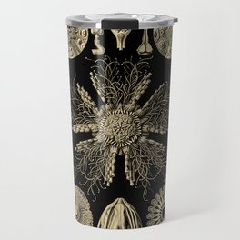 """""""Echinidea"""" from """"Art Forms of Nature"""" by Ernst Haeckel Travel Mug"""