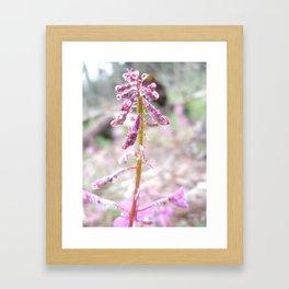 Bright Stalk Framed Art Print