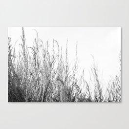 Sway Canvas Print