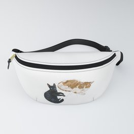 Val and Missy Fanny Pack