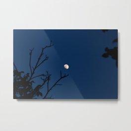 Moon in the blue Metal Print